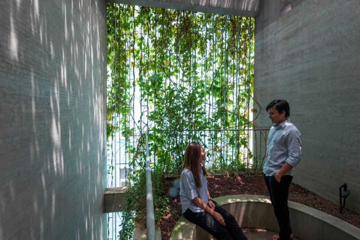 The Breathing House hasa rooftop terrace area that is covered in greenery
