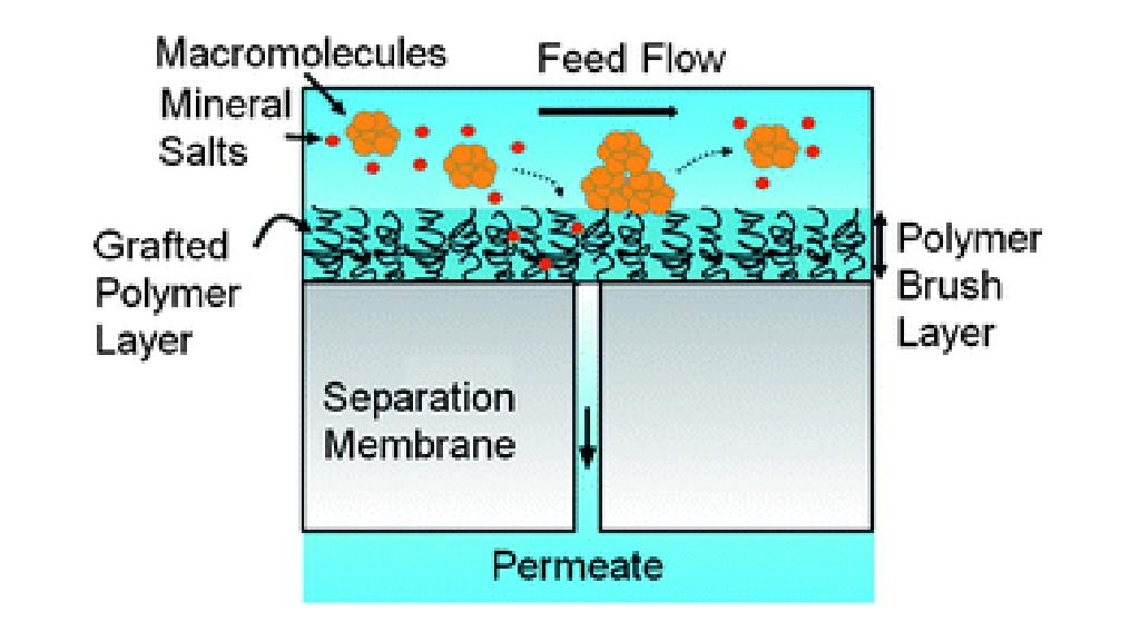 The new membrane developed by UCLA researchers