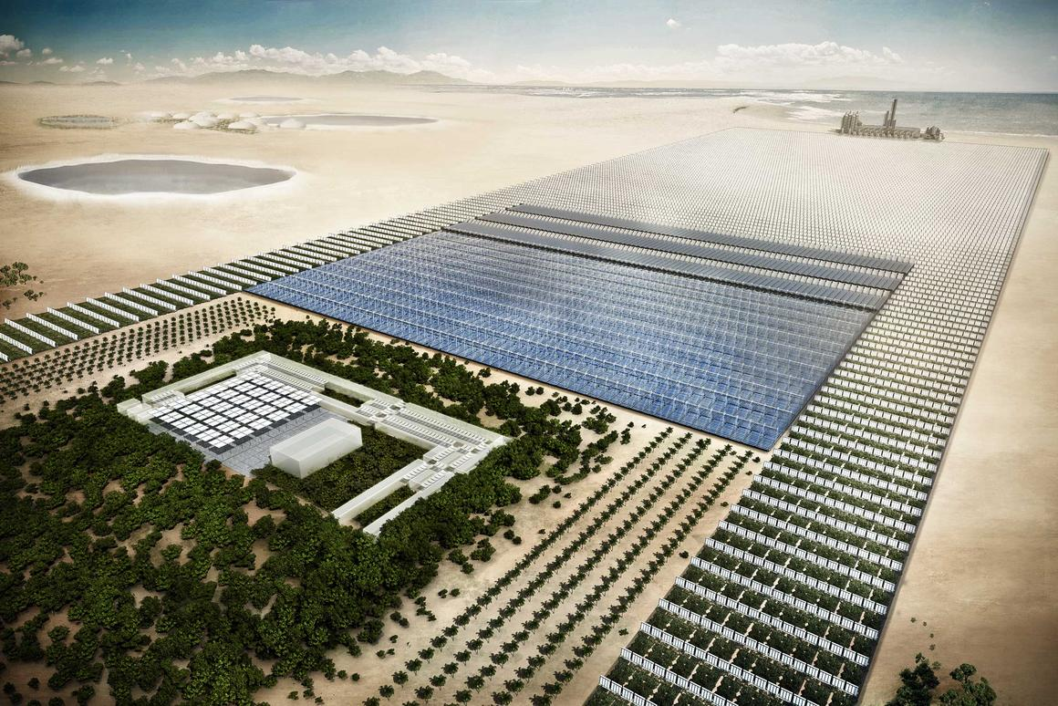 Conceptual illustration of the Sahara Forest Project that will produce fresh water, electricity and food in the desert (Image: Sahara Forest Project Foundation / Screenergy)