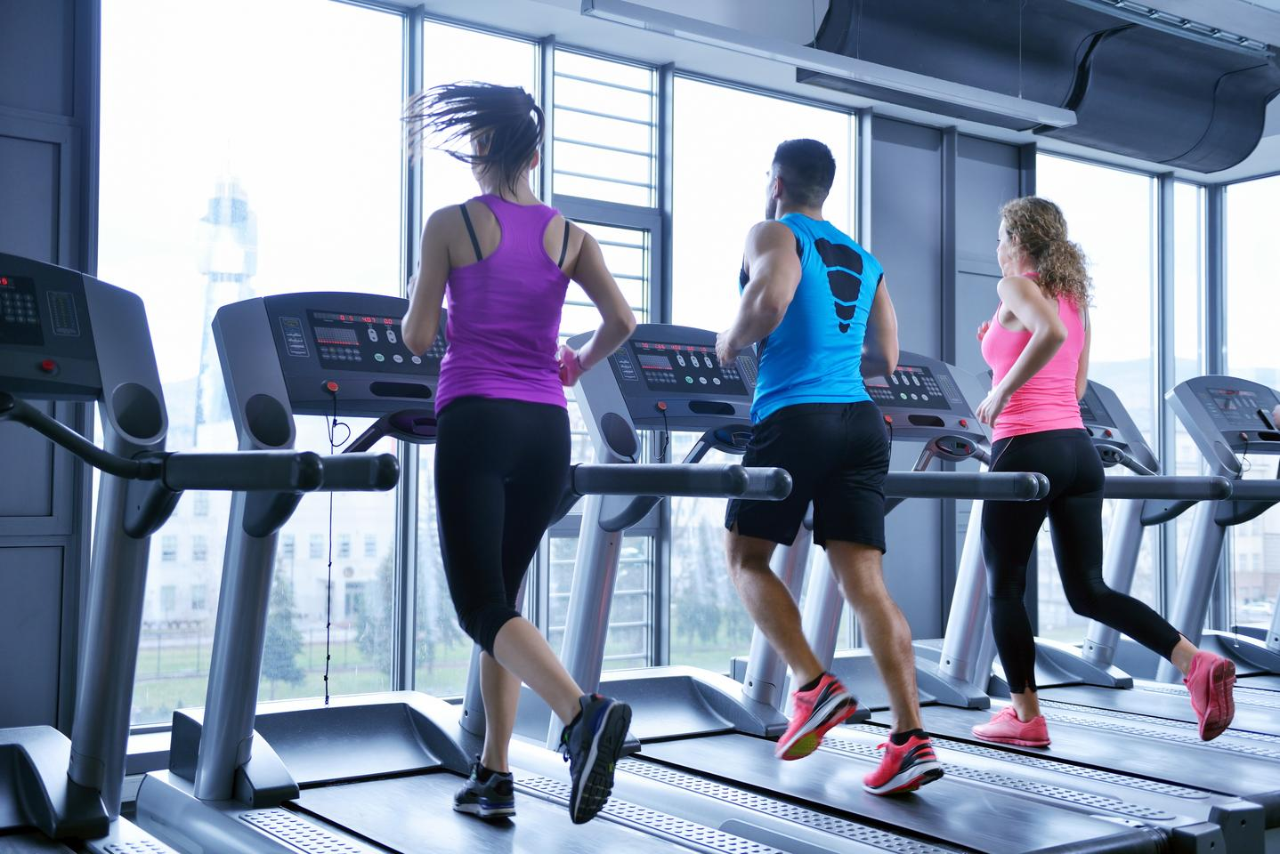 If you're unable to get sufficient exercise, a protein known as Sestrin may help make up for it