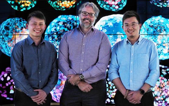 The Australian contingent of the international team responsible for the first complete model of an early human embryo, (from left to right) Jia Ping Tan, Professor Jose Polo, Dr Xiaodong (Ethan) Liu