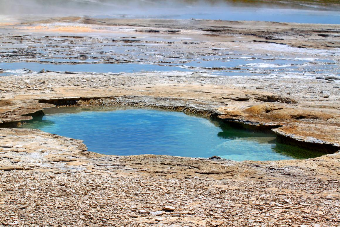 A new study gives more evidence that life got started in shallow ponds, not the deep ocean