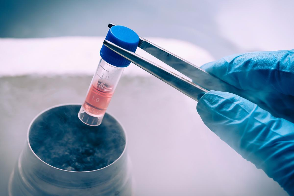 The FDA is taking on the large network of stem cell treatment centers in the US that offer unproven medical treatments