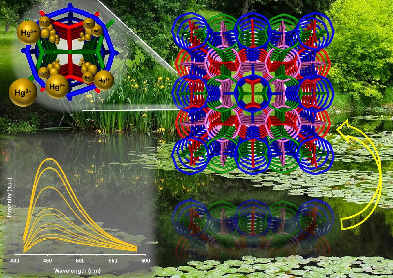 Different views of the crystal structure of an organic framework that traps heavy metals