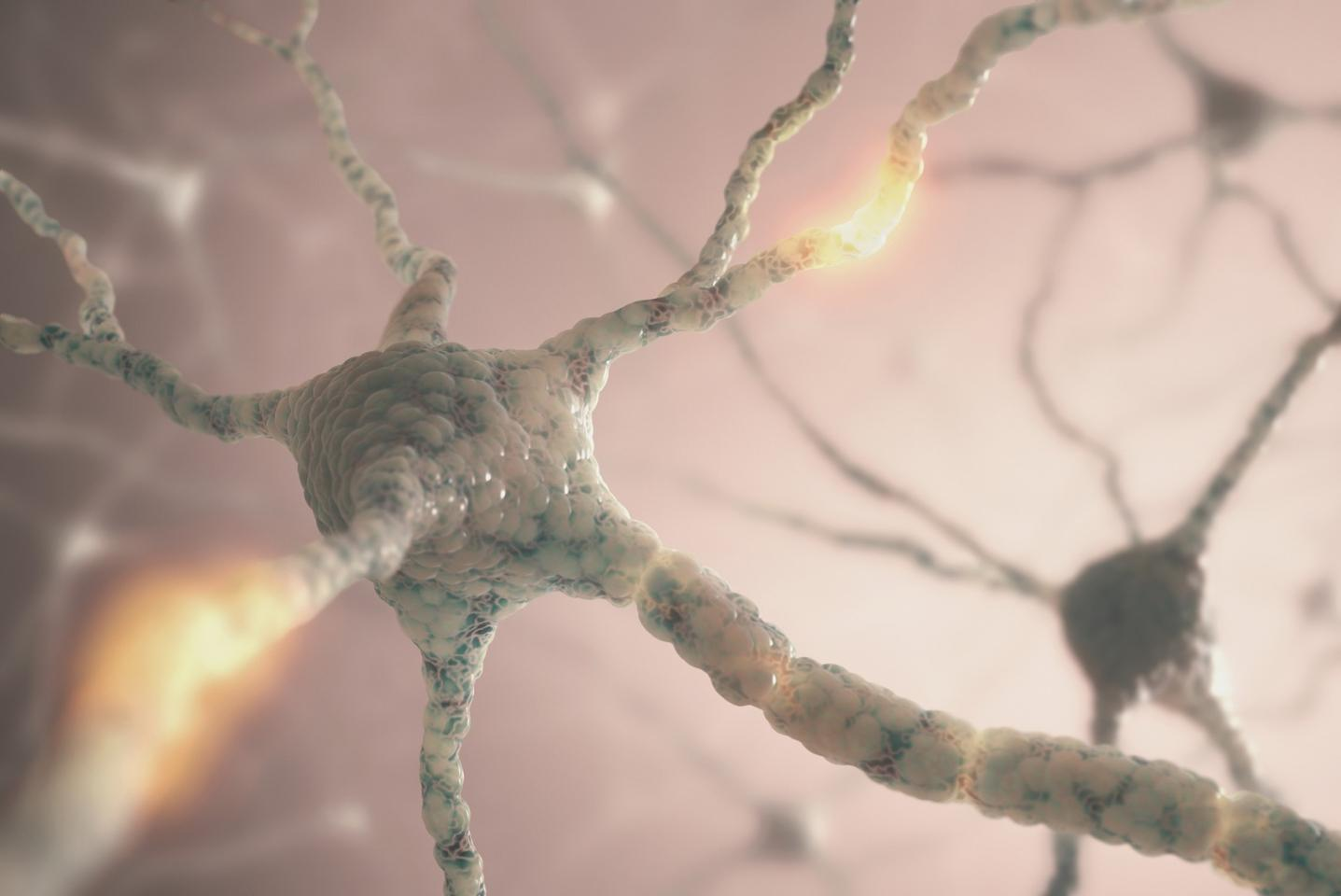 Researchers have studied a protein linked with Alzheimer's, and found just how it damages the brain and how that can be reversed