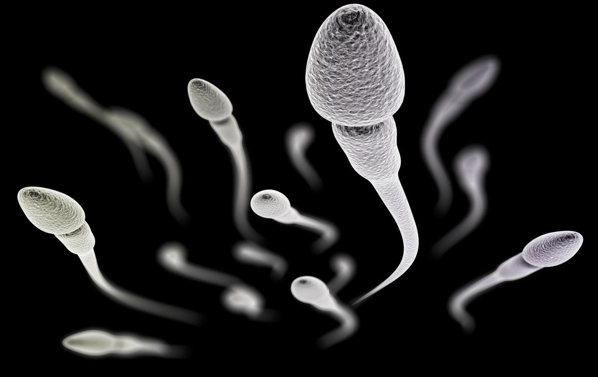 Researchers have developed a new method of male contraception that's medium-term and reversible