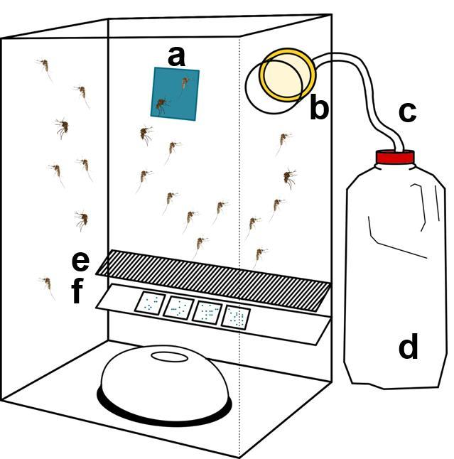 A diagram shows how passive box traps were modified: (a) feeding substance fixed with a magnet, (b) specimen jar holding a sponge, (c) a rope covered with plastic tubing to transfer water to the sponge, (d) bottle filled with water, (e) mesh preventing dead mosquitoes falling into the waste collection insert, and (f) an insert with nucleic acid preservation cards, which can preserve viral RNA at room temperature for later testing