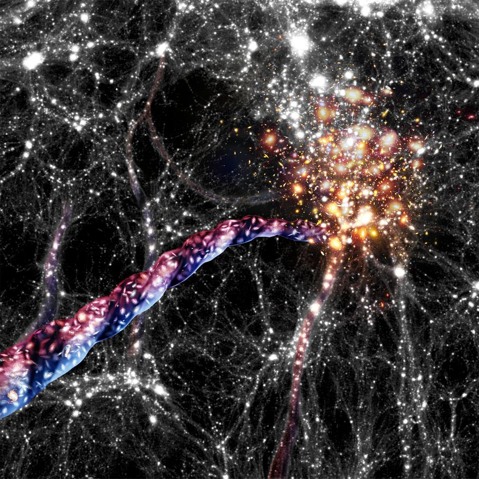 An artist's impression of cosmic filaments. Galaxies appear as bright spots inside the filaments and concentrated in clusters at the ends. Light from the top halves of the filaments was found to be red-shifted (moving away from us) while the bottoms were blue-shifted (moving towards us), indicating the filaments are spinning