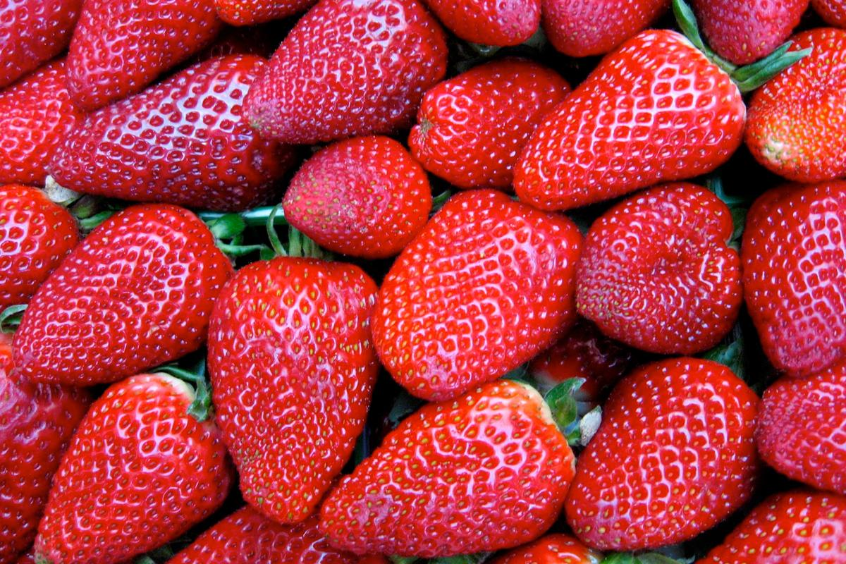 Fruit treated with the coating retains moisture longer, and ripens slower