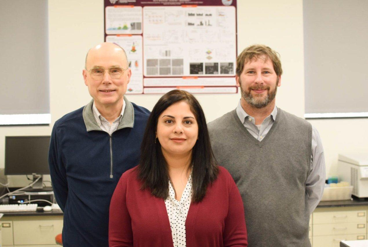 From left to right, Virginia Tech's professor of chemical engineering Rick Davis and associate professor of mechanical engineering Bahareh Behkam, worked with  assistant professor of biomedical sciences and pathobiology in the Virginia-Maryland College of Veterinary Medicine, Coy Allen, to develop a new kind of cancer drug delivery vehicle
