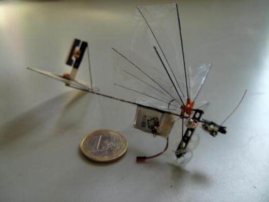 The DelFly Micro