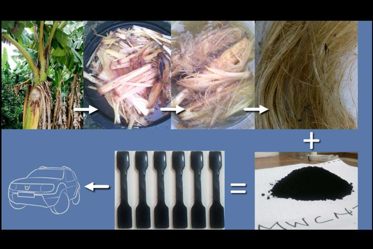 A diagram showing the source, processing and end use of the plantain fibers