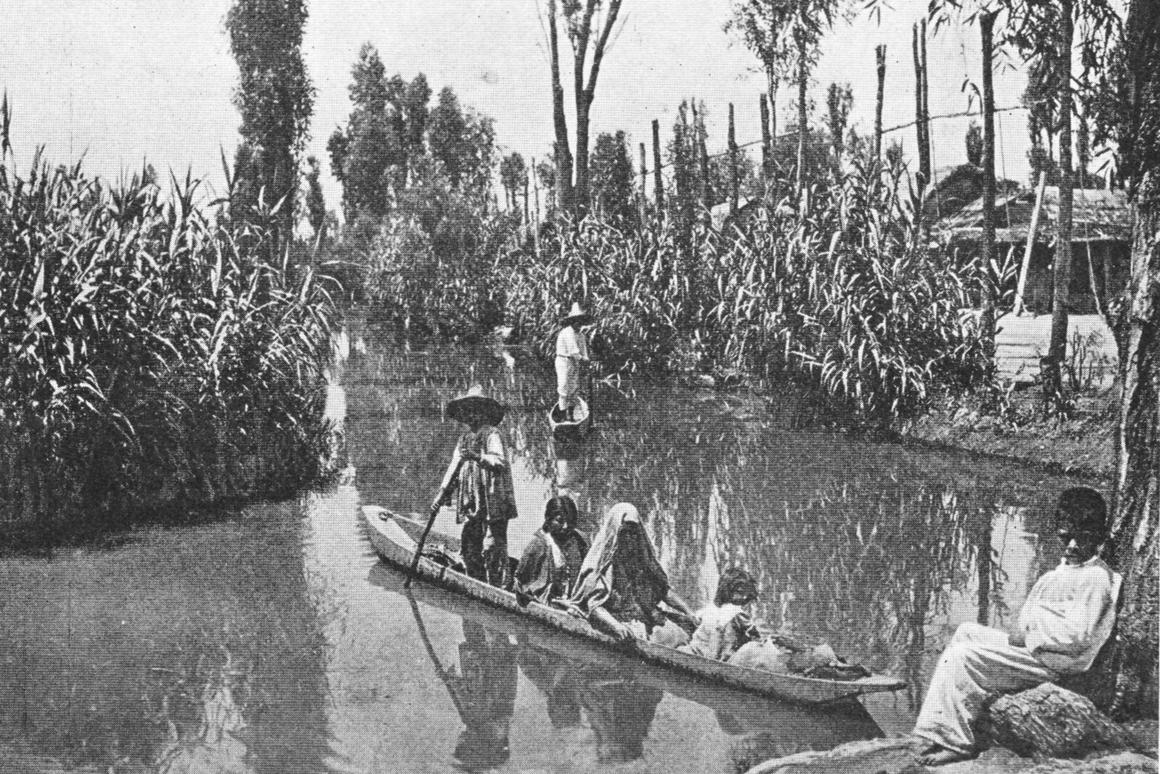 Traditional chinampas photographed in 1912