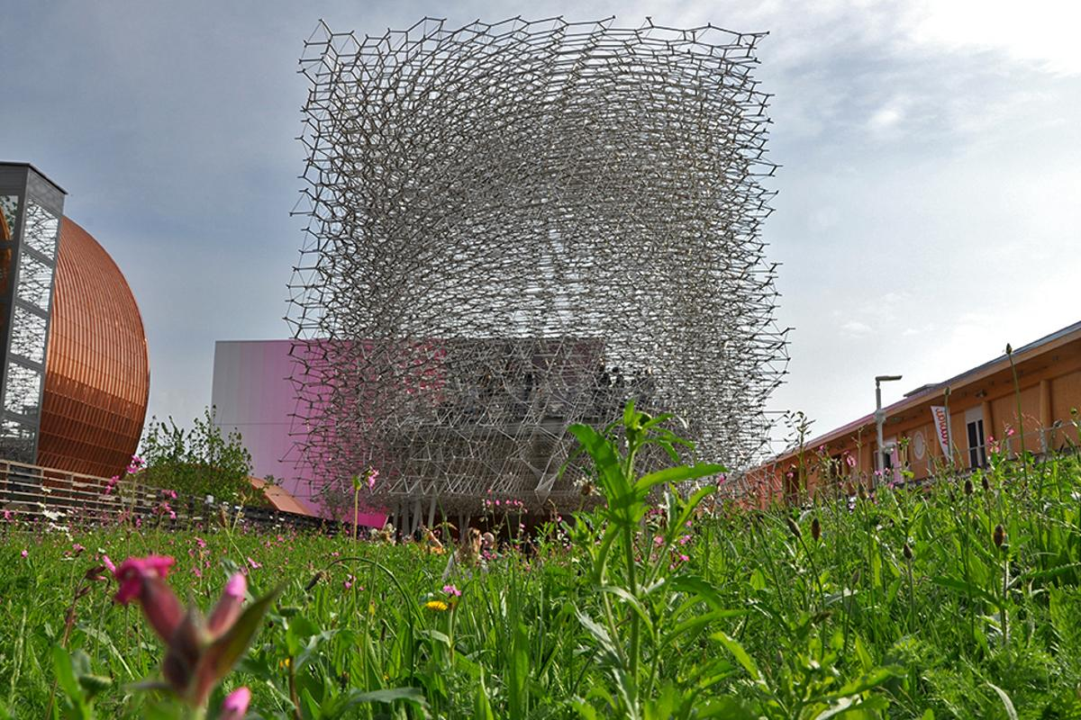 The stand out UK Pavilion is designed by British artist Wolfgang Buttress