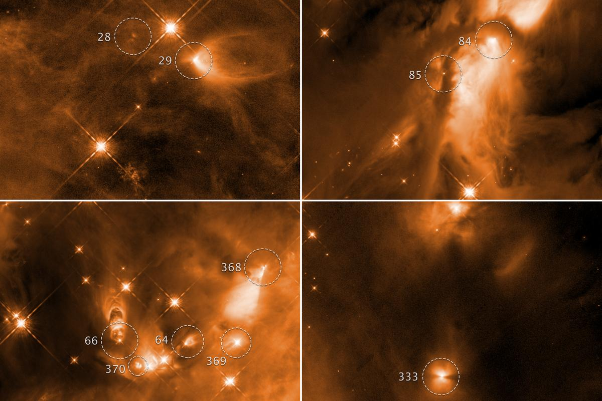 Images of protostars located in the Orion Complex, as captured by the Hubble Space Telescope