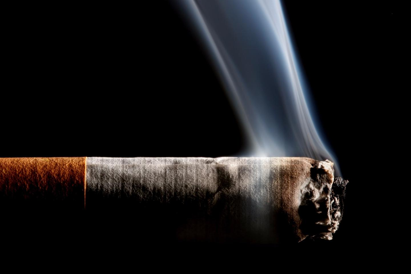 Belief regarding the nicotine content of cigarettes might influence the brain activity and cravings of smokers