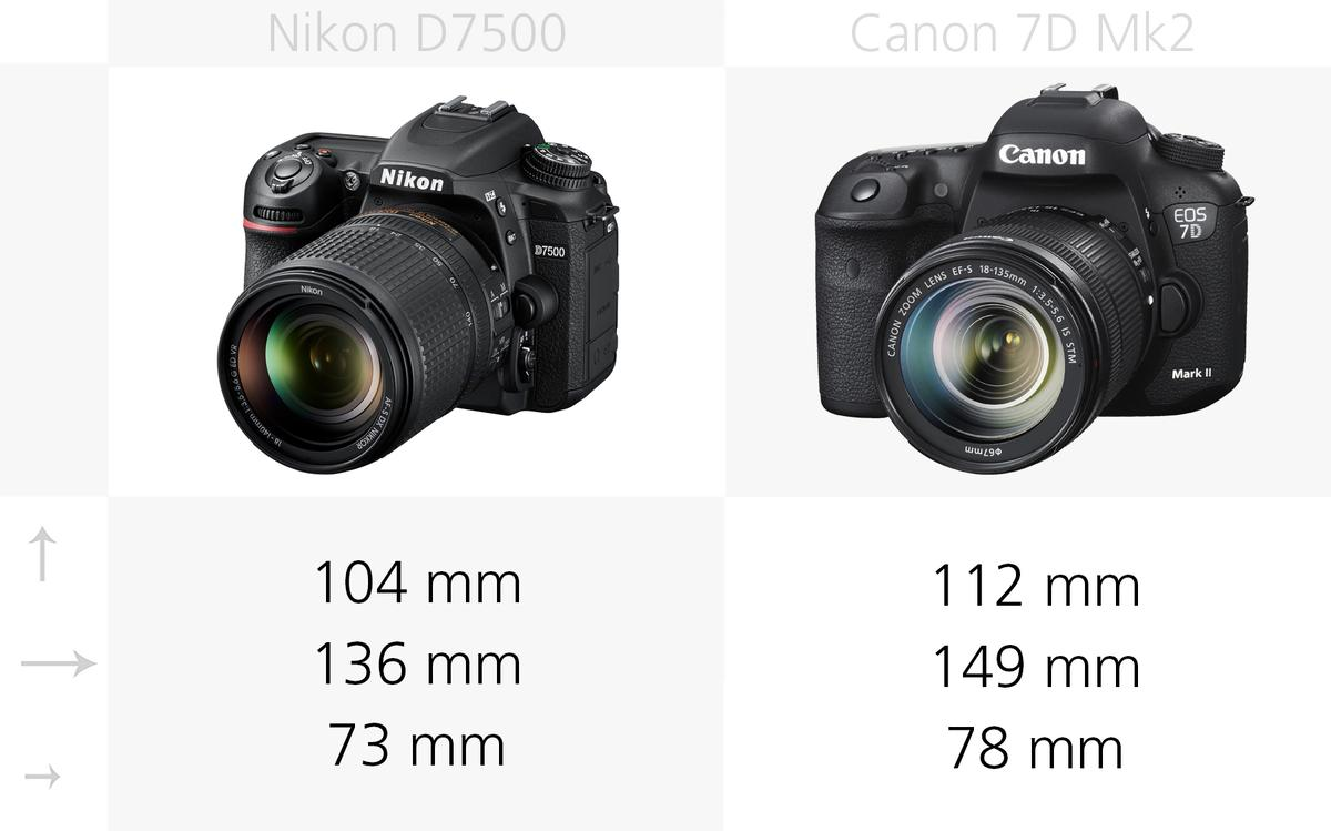 The dimensions of the Nikon D7500 and Canon 7D Mark II compared