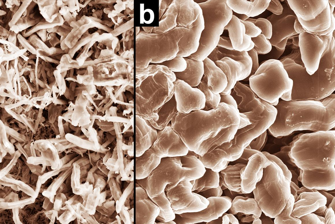 Scanning electron microscope images that show how normal electrolyte promotes dendrite growth (a, left), while PNNL's new electrolyte produces smooth nodules that don't short-circuit cells (b, right)