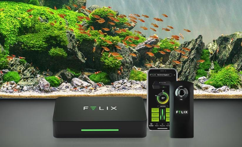 The Felix smart aquarium system is currently crowdfunding on Indiegogo