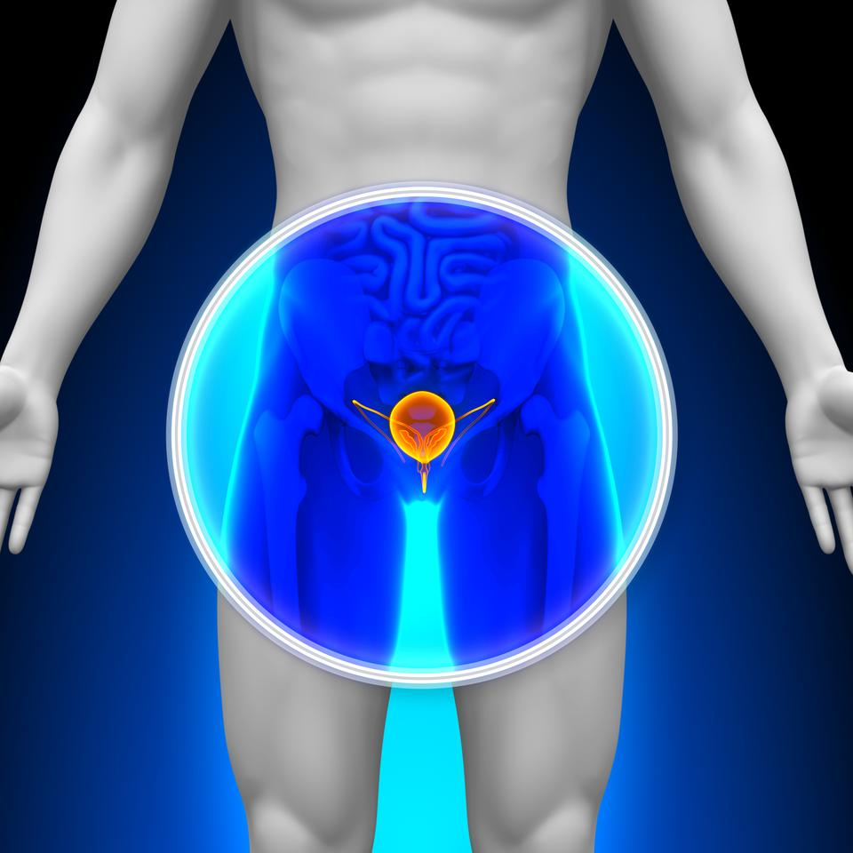 Researchers have developed a more direct vaccine that clears out urinary tract infections