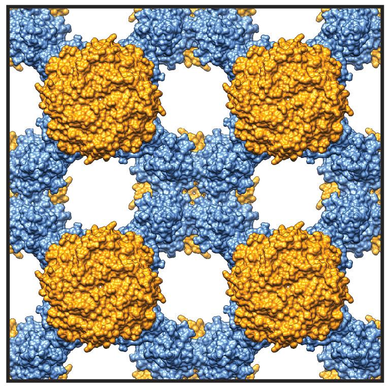 The grid-like adaptive protein crystal