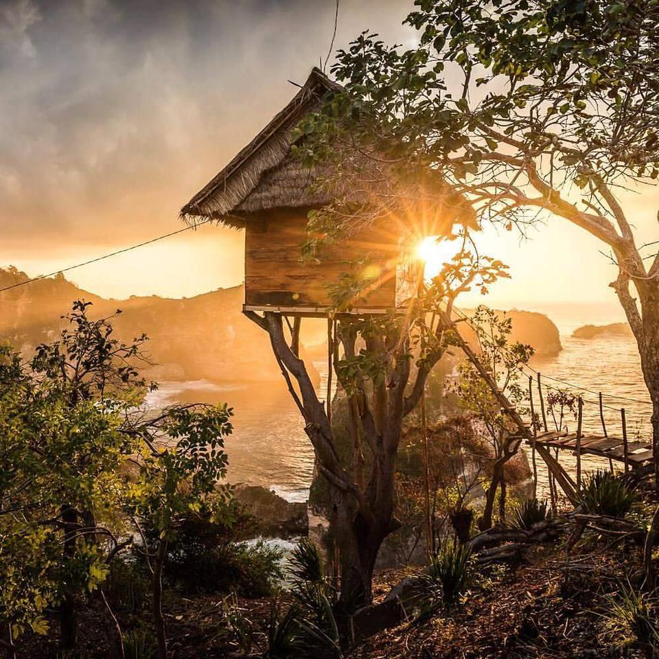 The Rumah Pohon treehouse in Bali'sNusa Penida