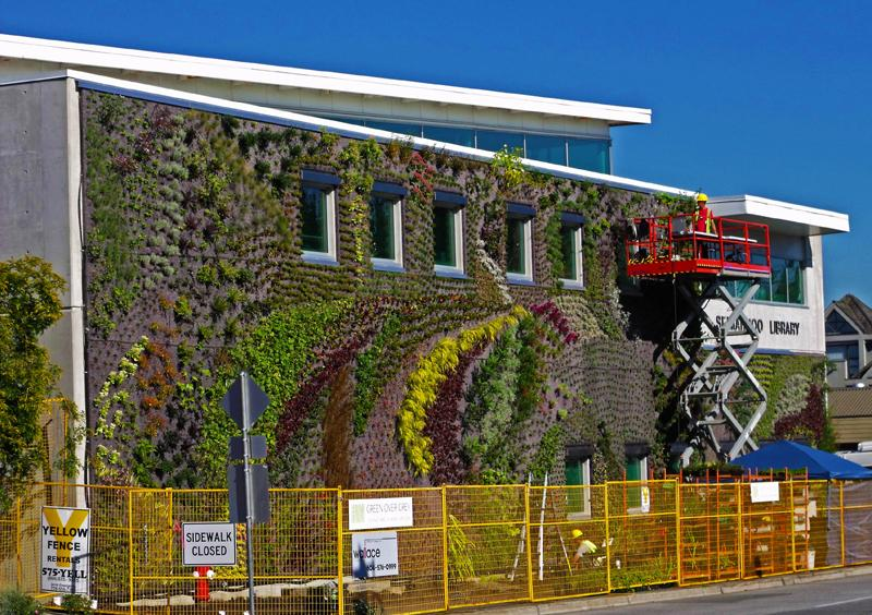 Designers have completed the largest and most biologically diverse living wall in Surrey, British Columbia