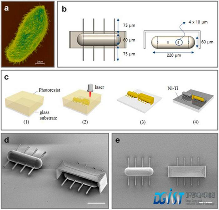 Design and fabrication process of ciliary stroke motion microrobots developed by Prof. Choi's research team.