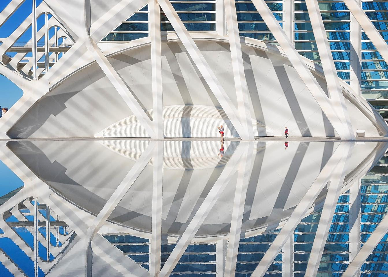 """Overall winner of the 2019 competition. """"Reflexion"""",Alfonso Béjar. Valencia, Spain"""