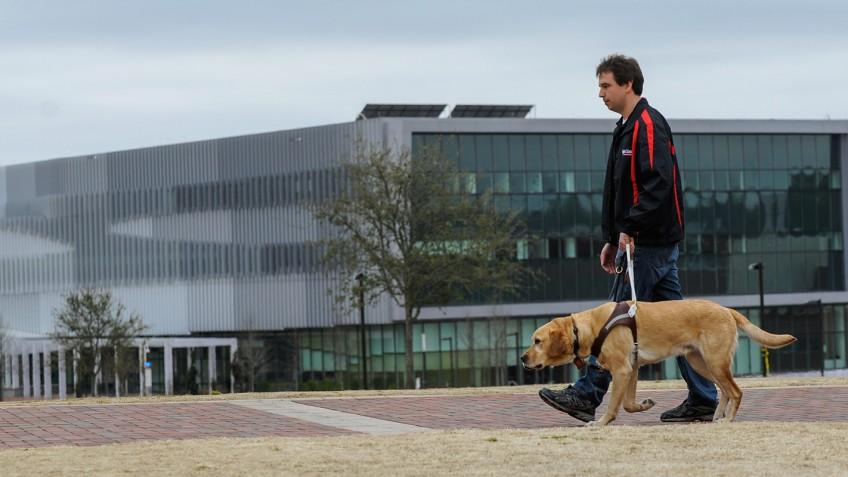 PhD student Sean Mealin (seen here with Simba) is lead author of a paper on the research, and is also blind himself