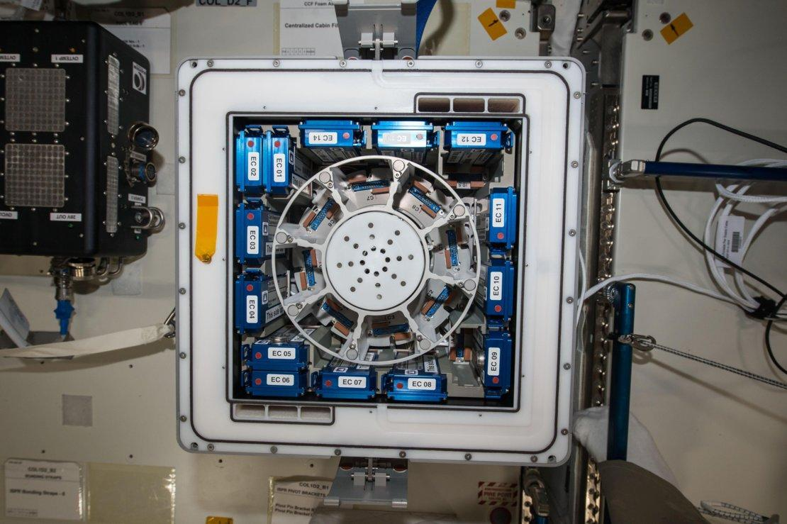 The Kubik incubator on the ISS
