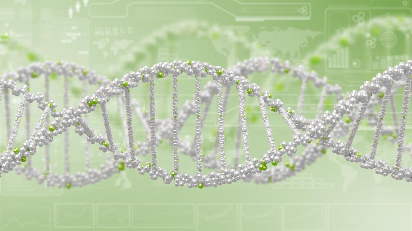 A massive study has identified 14 genetic variants associated with body weight