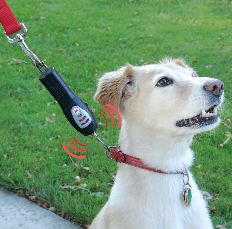 The Tug-Preventing Dog Collar trains dogs to not pull on the leash by emitting an ultrasonic tone