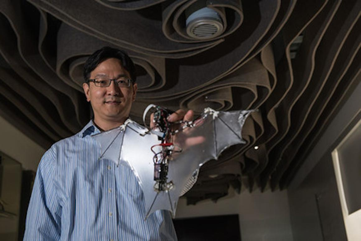 Researchers at Caltech and UIUC have developed the Bat Bot, a robot that mimics the complex wing structure of a bat