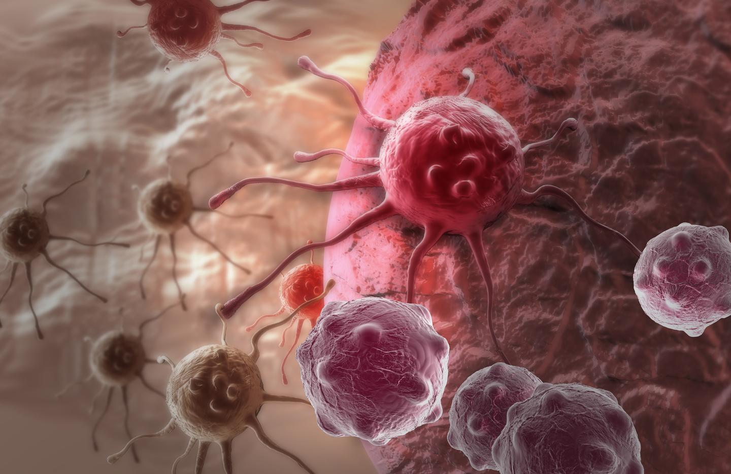 Researchers have designed a new drug delivery system that targets only cancer cells
