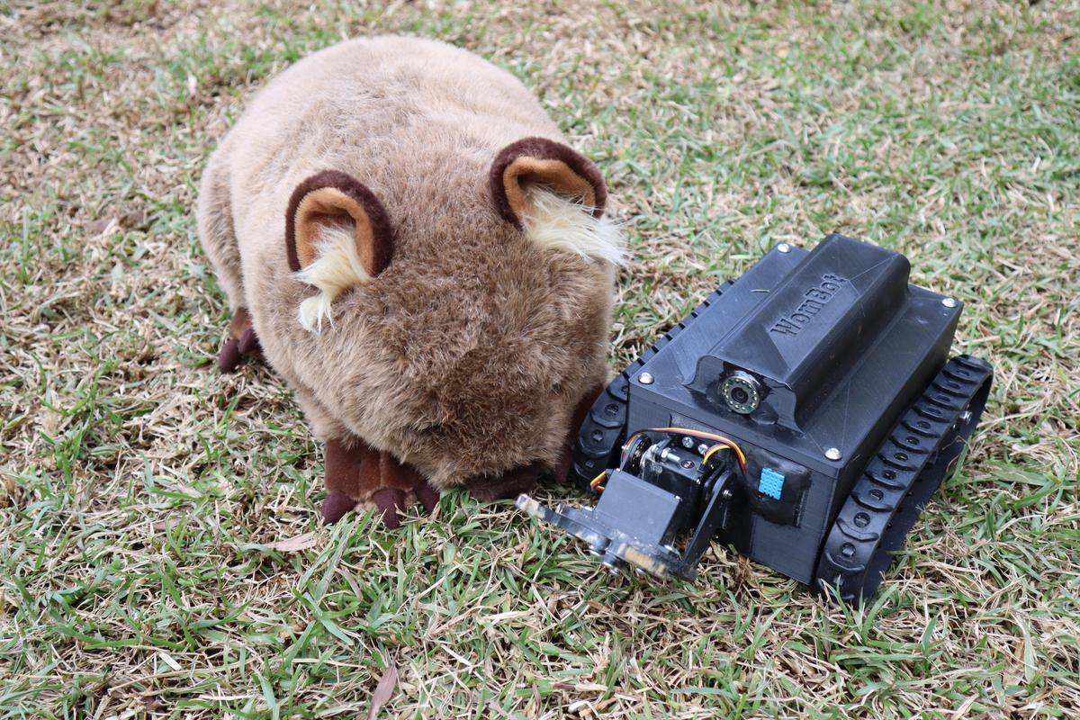 The WomBot, alongside a plush toy wombat for scale