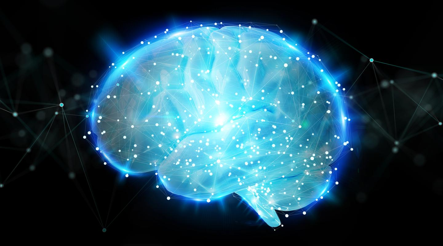 It is hypothesized potential anti-aging therapies could work by suppressing excessive neural activity in a person's senior years