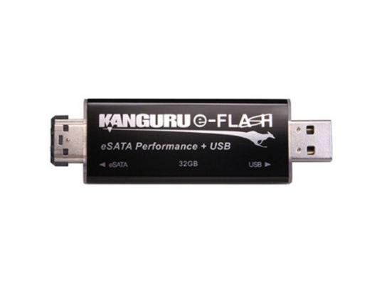 The Kanguru e-Flash drive.