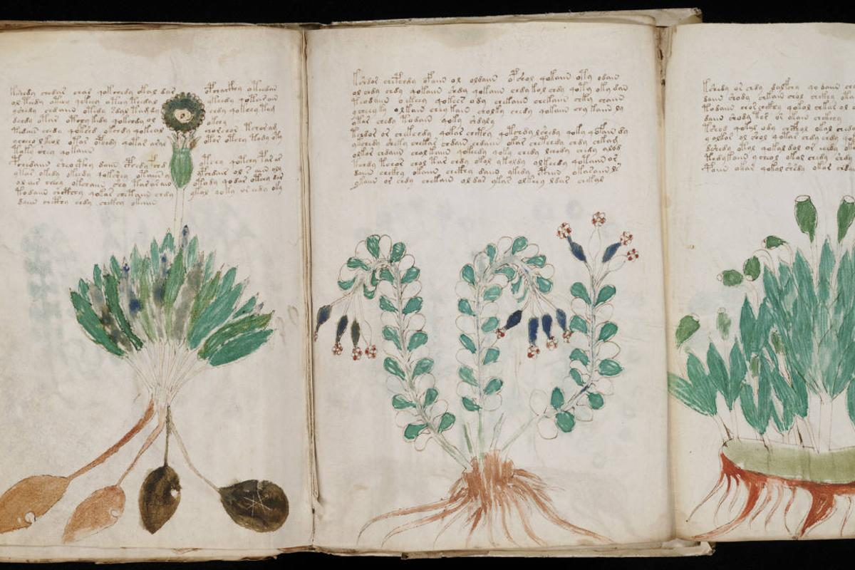 Two computer scientists are claiming to have created an algorithm that can decode the mysterious Voynich manuscript