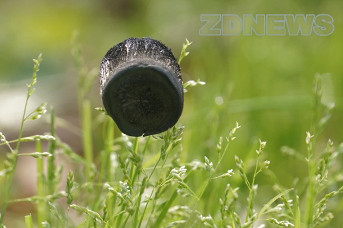 The graphene aerogel can be supported by blades of grass