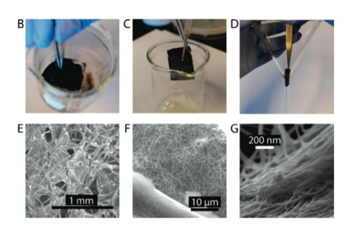The filter being treated with silver and CNTs (B,C), and SEM images of the cotton, silver nanowires, and CNTs (E,F,G)