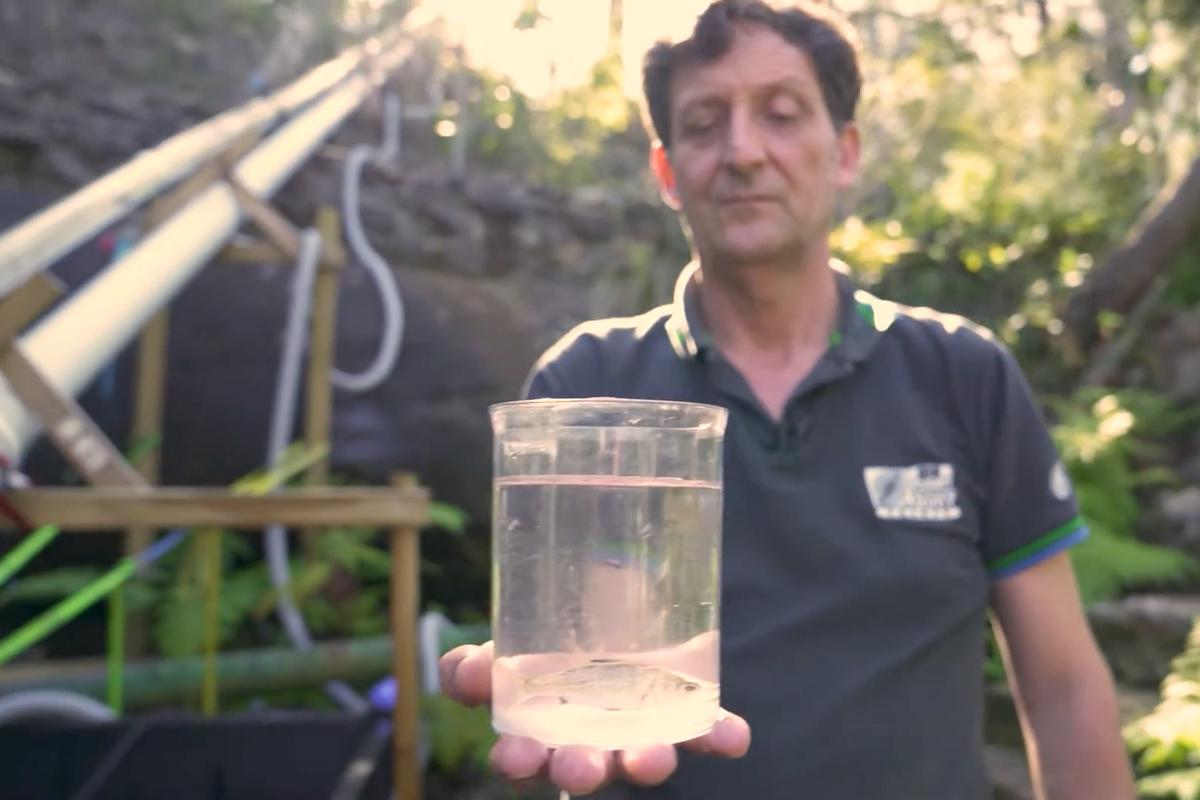 Prof. Bill Peirson, with a fish about to make a trip up a tube fishway