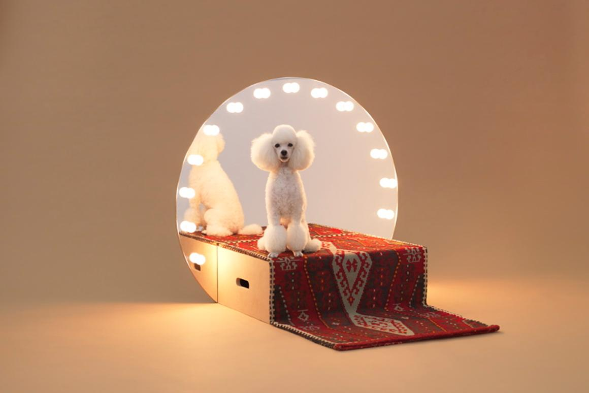 Architecture for Dogs is a unique project that showcases various structural designs that have been specifically created for dogs