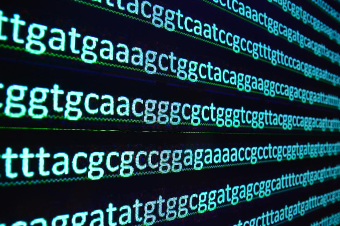 """Researchers have discovered a species of yeast that breaks a """"universal rule"""" of DNA"""