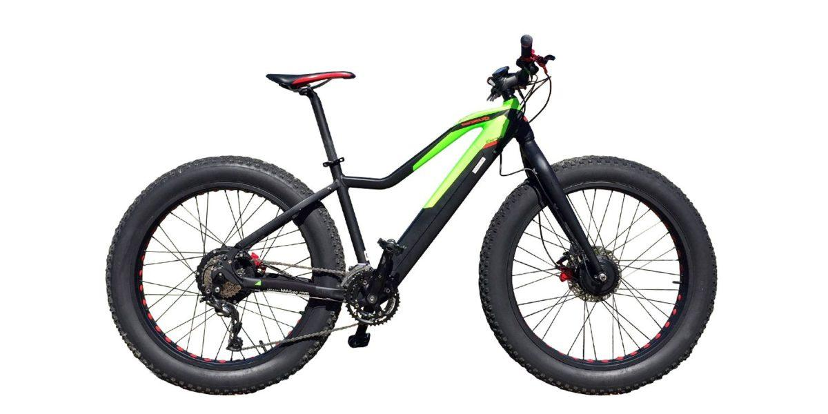 The Evo AWD Big Bud + from Easy motion isa fat tire ebike with two hub motors for extra traction when things get slippery
