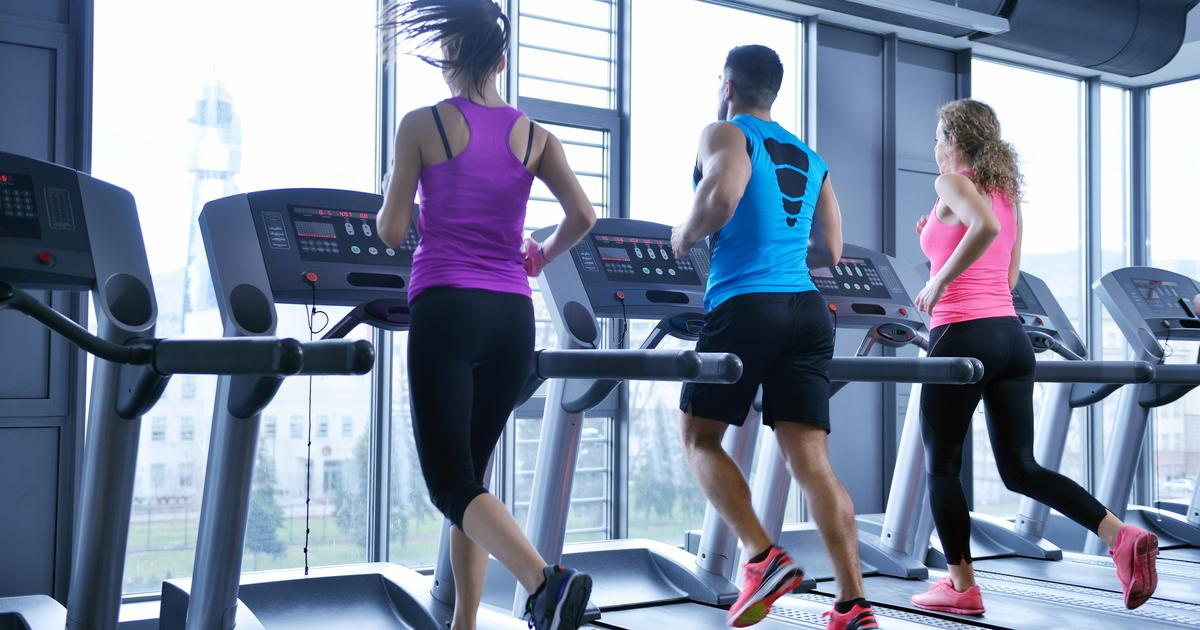 Could exercise be replaced with a protein supplement?