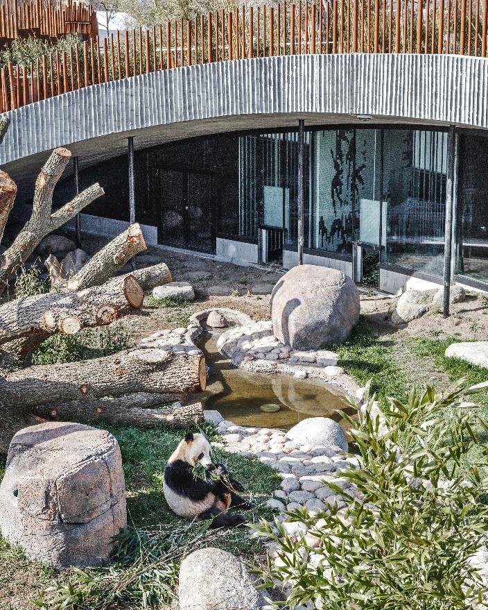 Panda House's landscaping is quite complex and includes shaded areas and water features