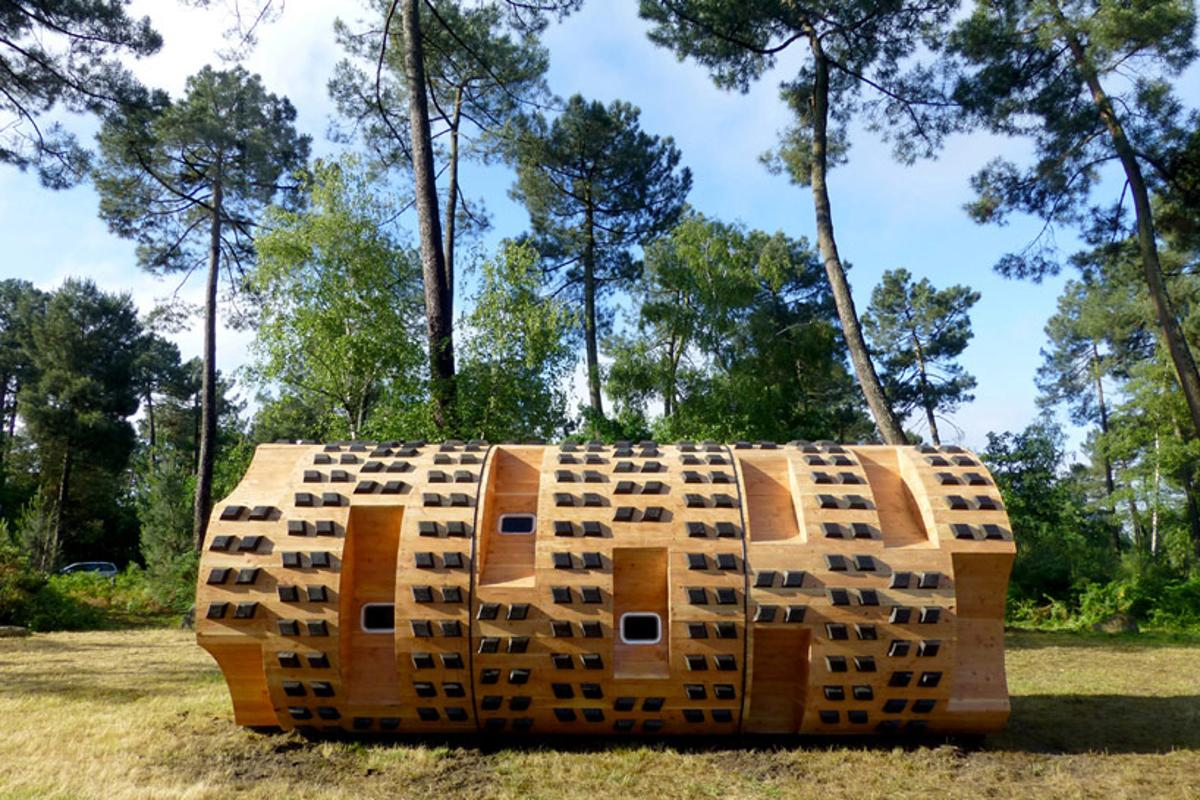 """Le Tronc Creux, which means """"The Hollow Trunk,"""" is a low impact shelter which sleeps nine and is roughly the same size as a shipping container"""