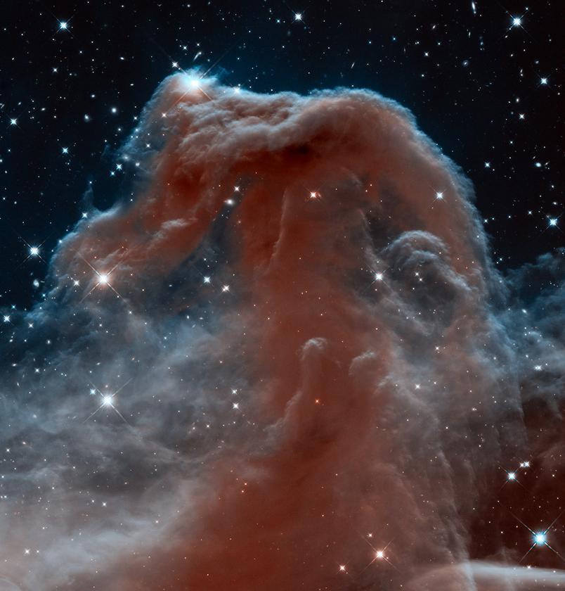Hubble's stunning near-infrared image of the Horsehead Nebula (Image: NASA)