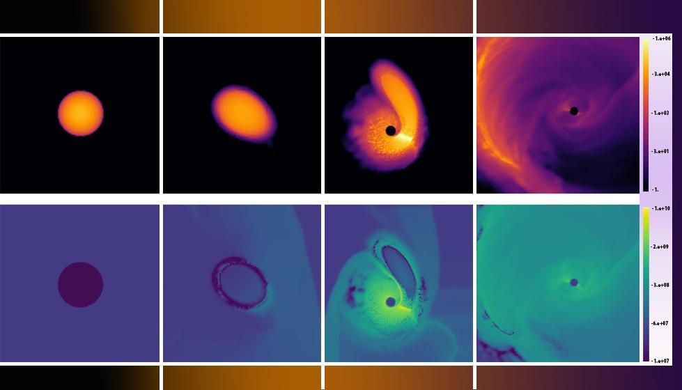 Images from the simulations - top row represents changes in density as a white dwarf passes a black hole, while the bottom row represents temperature